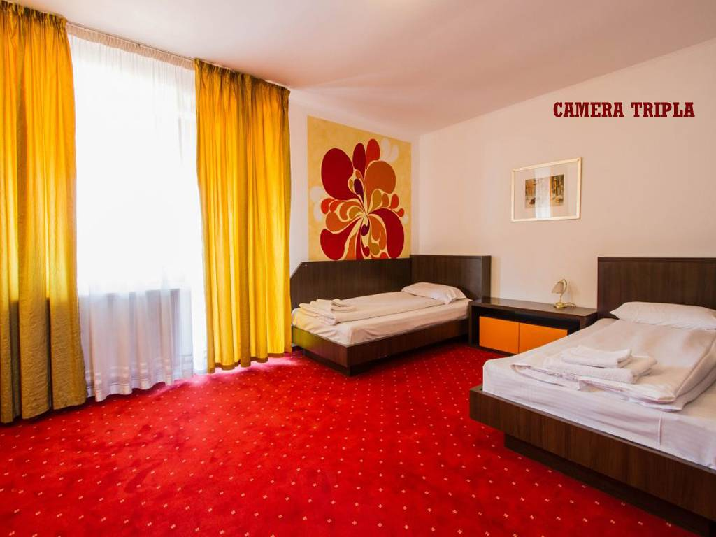 Poza Revelion 2019 langa Cetatea Rasnov! Hotel Max International, 2, 3 sau 4 nopti cu Mic dejun zilnic, Cina festiva de Revelion cu petrecere si Cina pe 01 Ian 2019! 29 Dec 2018- 02 Ian 2019 10